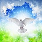 Inner Peace Is Always Present